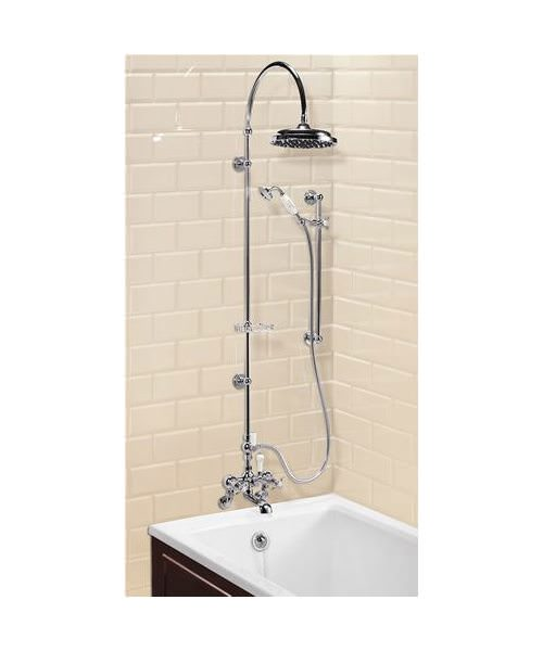 Wall Mounted Bath Shower Mixer With Rigid Riser-Curved Arm-9in Rose